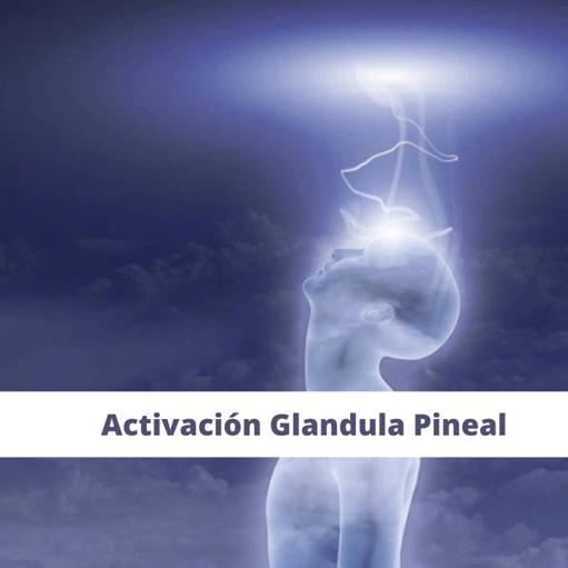 Taller Glandula Pineal